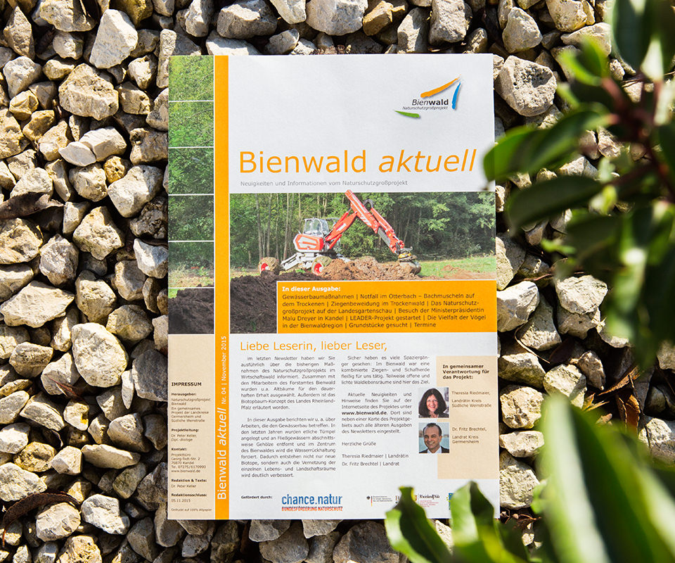 Sabath Media Werbeagentur - Naturschutz Bienwald – Magazin - Referenzbild 1