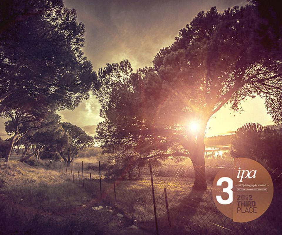 Sabath Media Blog - Eröffnung Fotostudio - Bild 2