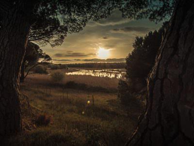 Sabath Media - Projekt Vorschaubild - Landschaft – Fotografie