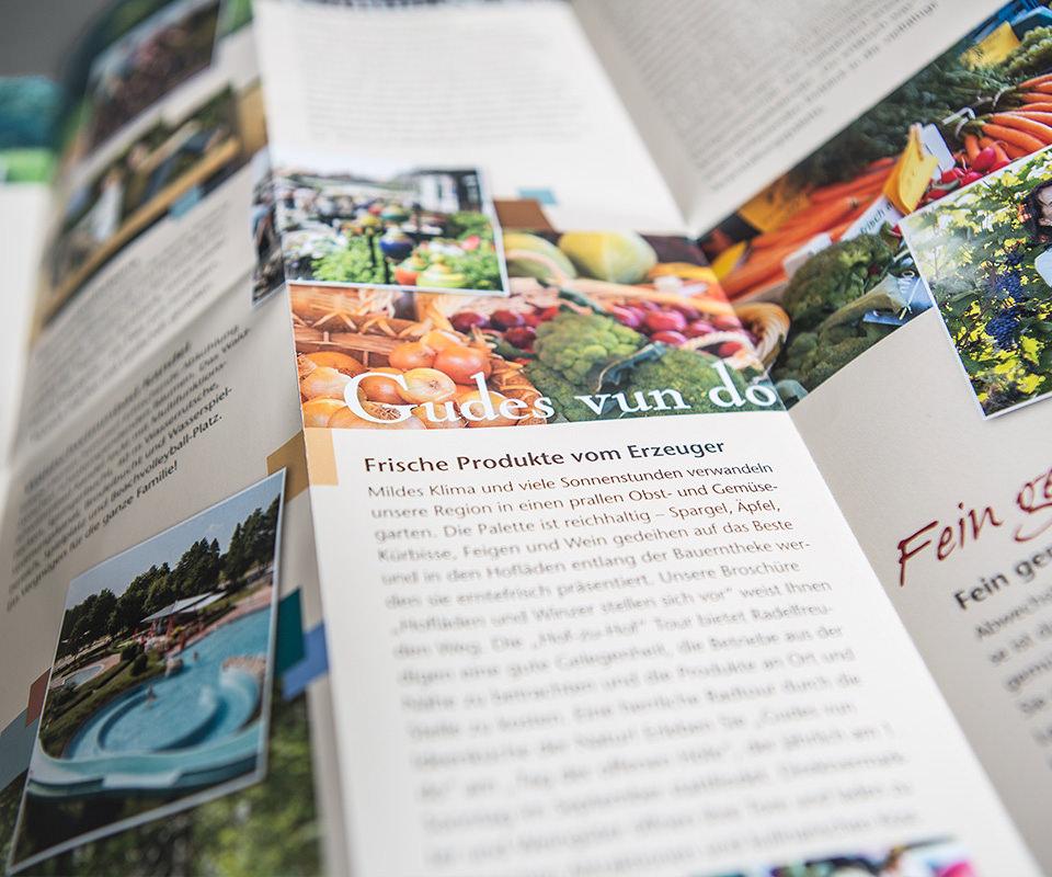 Sabath Media Werbeagentur - Südpfalz Tourismus – Wanderkarte - Referenzbild 1