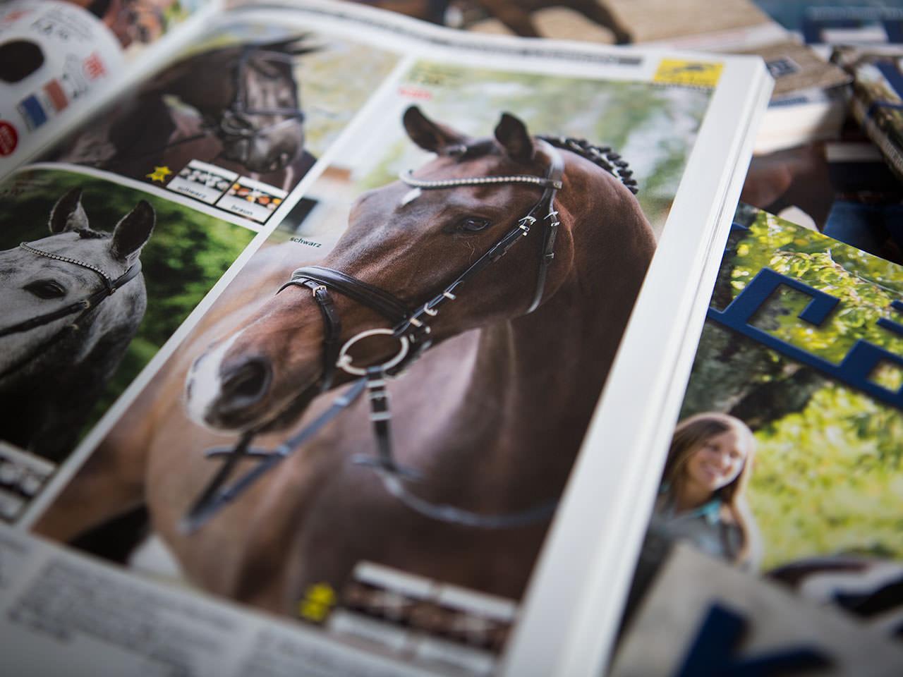 Sabath Media Werbeagentur - Krämer Pferdesport – Projektbeispiel - Referenzbild 1